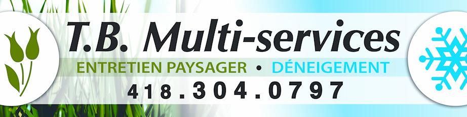 T.B. Multi-Services